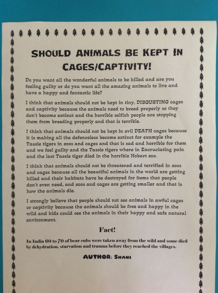 Animals have rights essay
