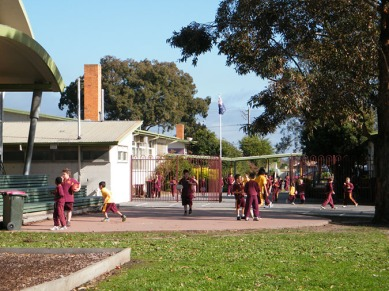 Our school oval