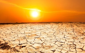 drought_2398818k