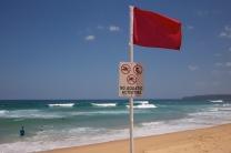 NEWCASTLE - SHARK SIGHTINGS - BEACH