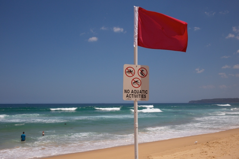 NEWCASTLE - SHARK SIGHTINGS - BEACH