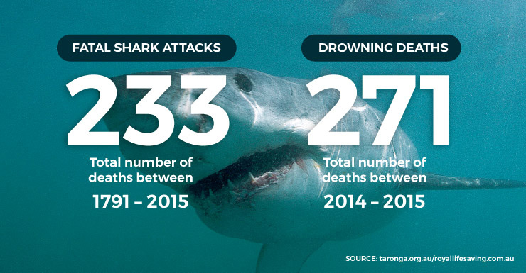 sharkdrown-250915-thenewdaily
